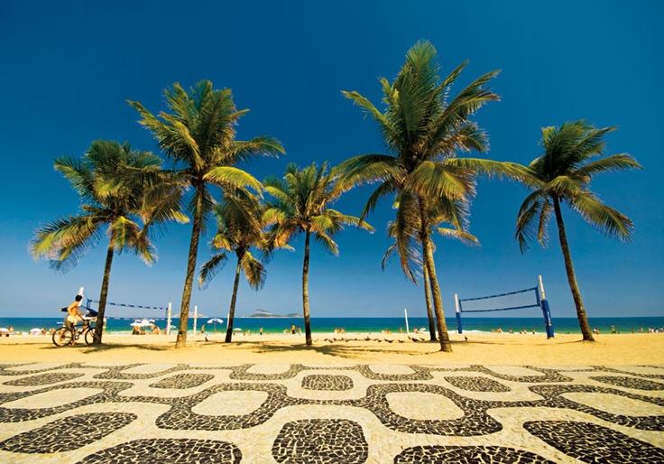 Coconut trees, Ipanema
