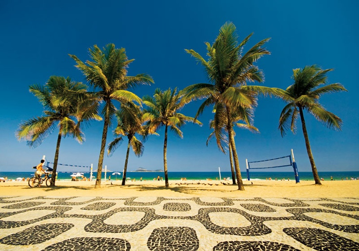 Coconut trees, Ipanema