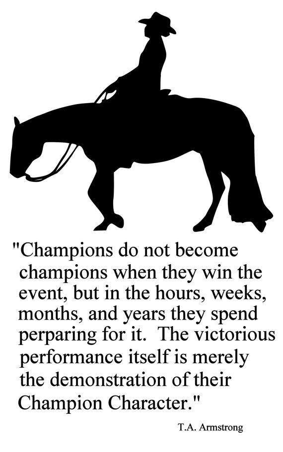 Horse-Champions Western Horse 2 Quote-Horse wall decal-Large 28 x 45 inches