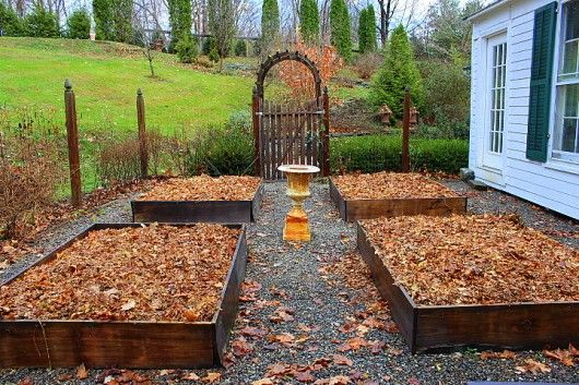 tips on how and *Why I Save My Autumn Leaves*…Top off your raised beds with shredded leaves, and you won't have to purchase top soil.