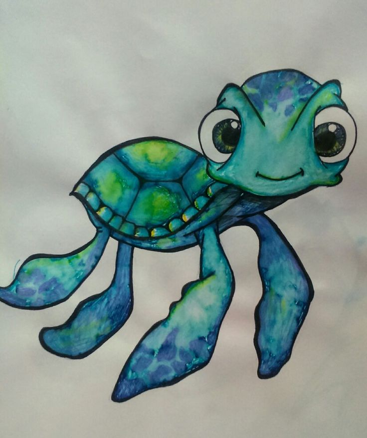 A cute turtle staright from the sea.