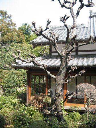 Ryotan-ji Temple, Hamamatsu: See 76 reviews, articles, and 130 photos of Ryotan-ji Temple, ranked No.5 on TripAdvisor among 148 attractions in Hamamatsu.