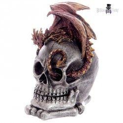 Box lebka s drakem