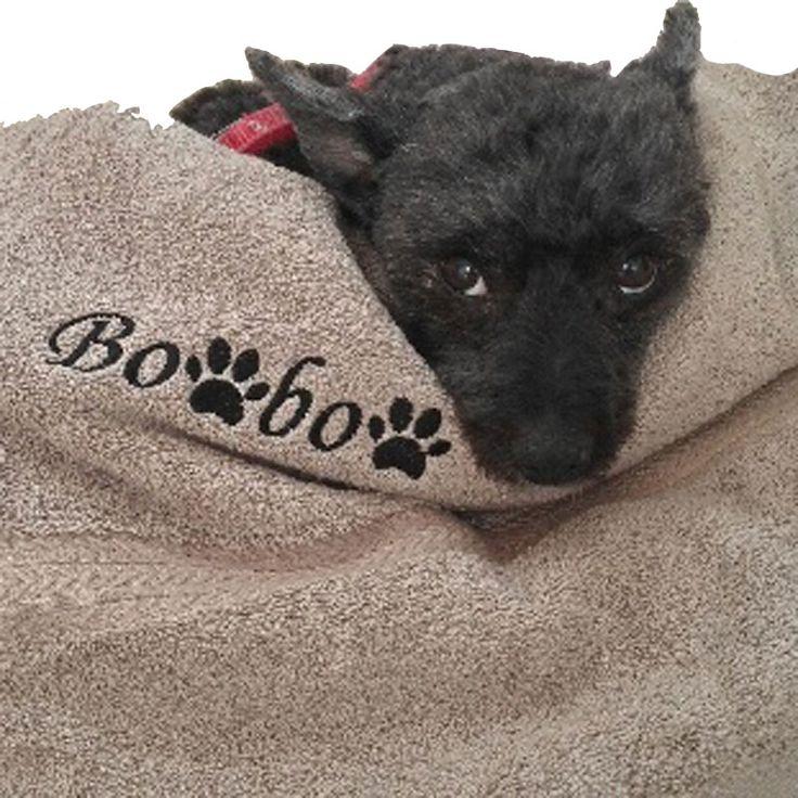 Serviette de toilette brodée avec un prénom et des empreintes de pattes de chien, soit en remplaçant une lettre soit en brodant à côté du prénom
