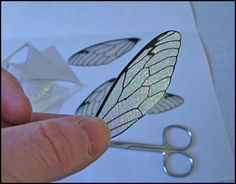 iridescent cicada wings using OHP Transparency film and Fantasy film or iridescent Cello. -- OOAK sculptor