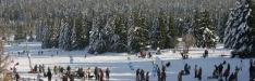Auf nach Braunlage! Das Wintersportgebiet ist das richtige Urlaubsziel für jeden Wintersportfan!
