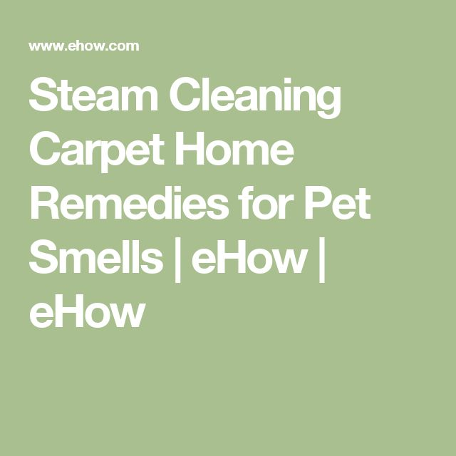 Steam Cleaning Carpet Home Remedies for Pet Smells   eHow   eHow