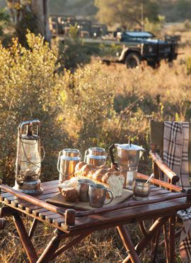Kings Camp - Timbavati Game Reserve, South Africa