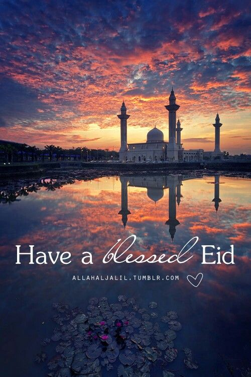 Eid mubarak to all my fellow Pinners . May you have a very delightful day and may Allah grant you health and happiness (Ameen)