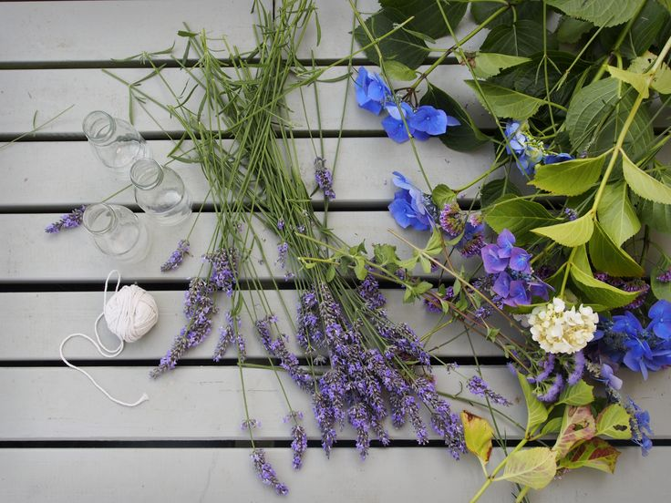 Hydrangeas + Lavender are my favourite flowers to dry.