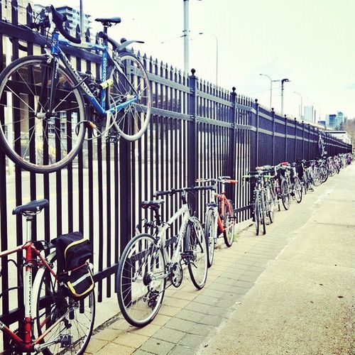 Bikes as far as the eye can see at the Fall Bike Show. Photo by Rhys Hastings, featured on Biking Toronto.