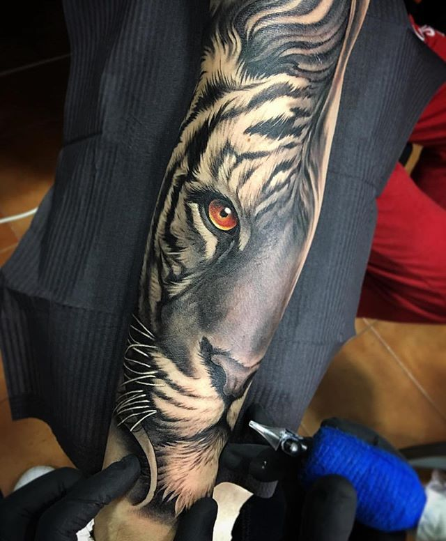 Awesome fusion tiger piece Artist IG: @davidgarciatattoo Collector: @yoanmerlo