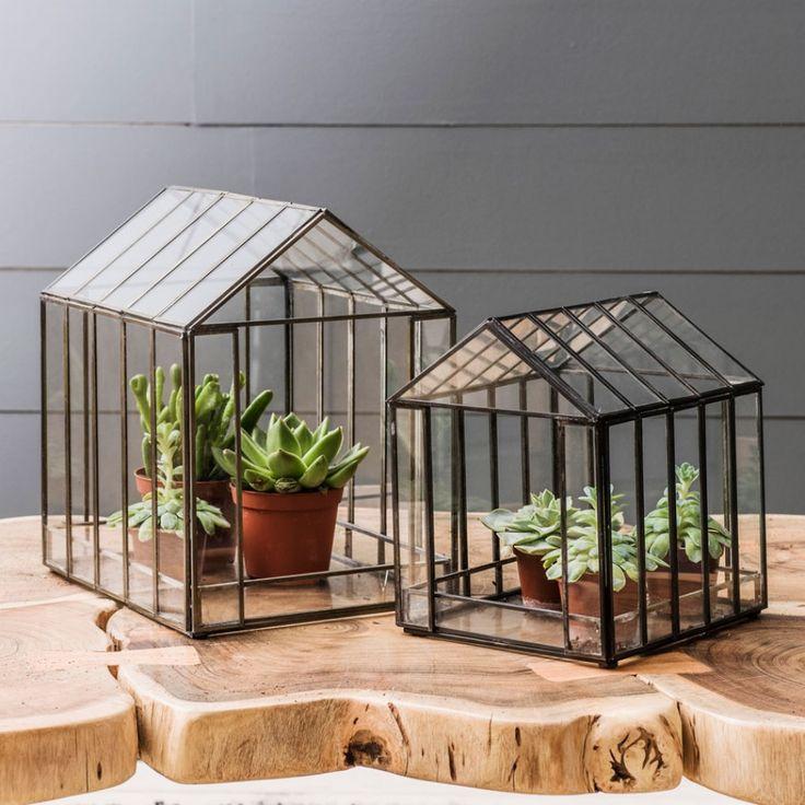 26 best Indoor Gardening images on Pinterest | Indoor gardening ...