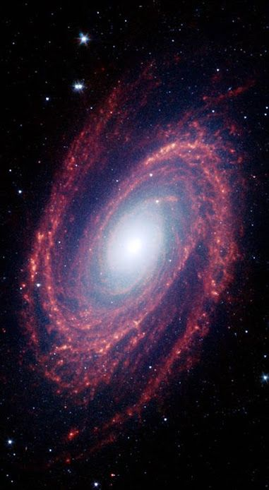Spiral Galaxy Messier 81 The magnificent spiral arms of the nearby galaxy Messier 81 are highlighted in this NASA Spitzer Space Telescope image. Located in the northern constellation of Ursa Major (which also includes the Big Dipper), this galaxy is easily visible through binoculars or a small telescope. M81 is located at a distance of 12 million light-years.