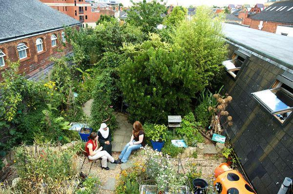 RISC Roof Garden RISC