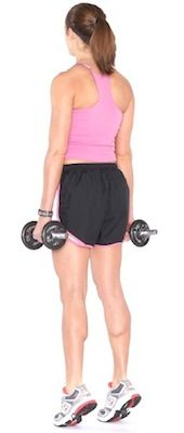 7. Calf Raises    Photo Credit: howstuffworks.com In a standing position, keeping the body straight. Keep your hands at your side and feet five inches apart …