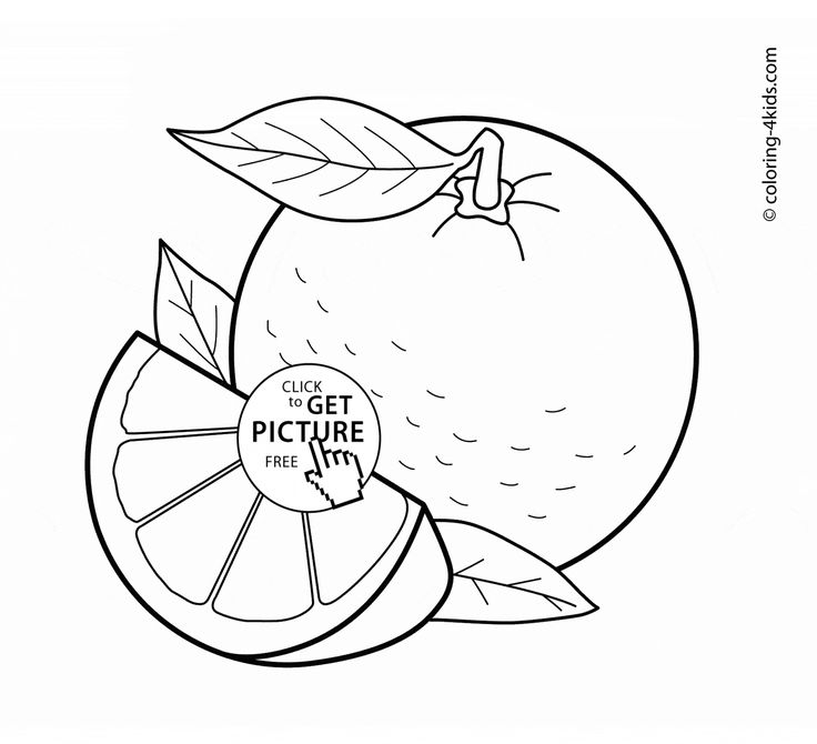 288300813627524951 on Fruits Coloring Page