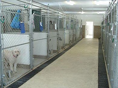 dog boarding kennel designs - Dog Kennel Design Ideas