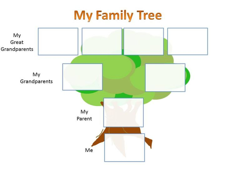26 best images about family tree charts for kids school for Family history charts templates