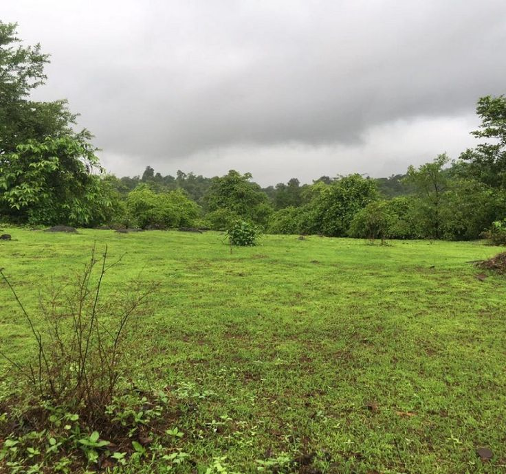 Land Details An agricultural land for sale in Pali, Raigad Maharashtra near Mumbai. Smiling Woods give to working professional to invest in agricultural land and assured regular income and profits.…