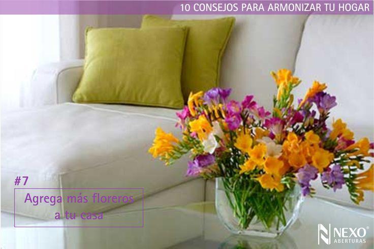Mejores 10 im genes de consejos para armonizar tu hogar en for Consejos de feng shui para la casa