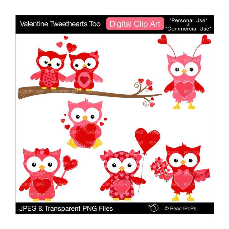 Buy 2 Get 1 Free SALE - cute clipart owls digital clip art ...