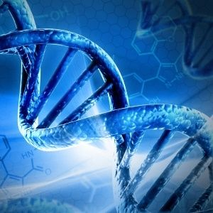 Our genes may soon advise our food and lifestyle choices