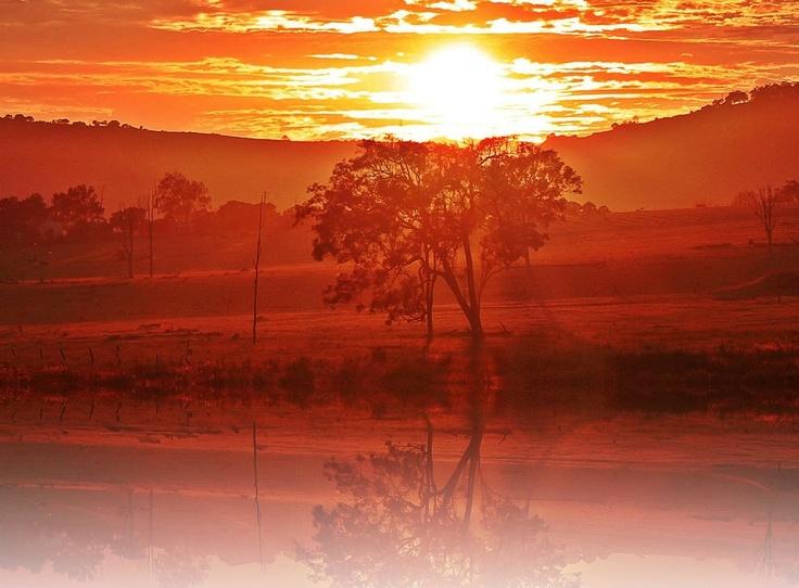 Hatton Vale, Lockyer valley, Queensland.