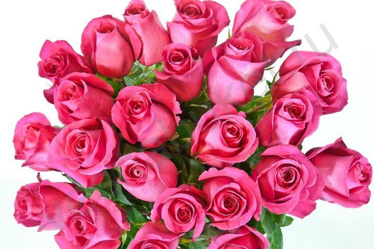 Букет из 51 розовых роз Роза ПинкФлойд