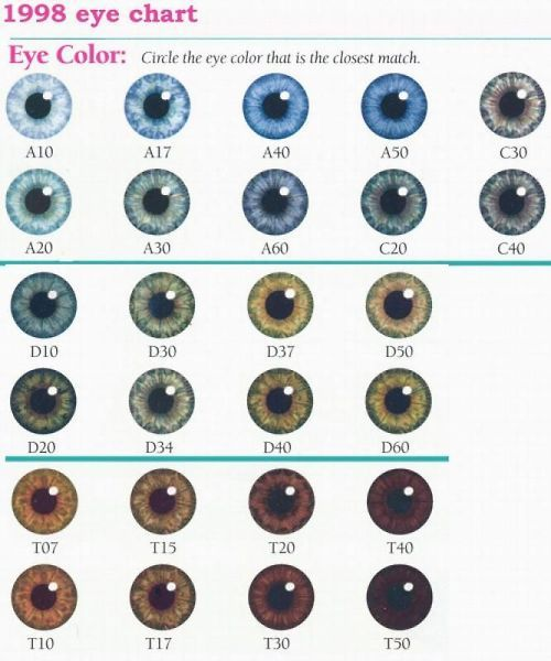 natural eye color chart - I feel like mine is D30 but sometimes looks like D10 or D20 or C20 depending on the lighting/day