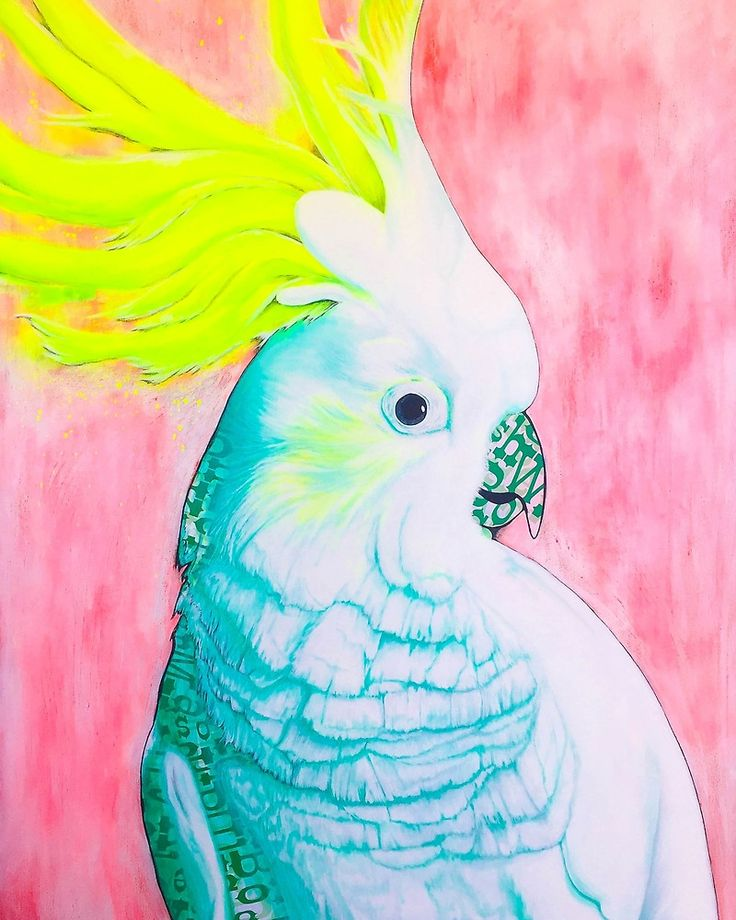 Cockatoo Dreams Giclée art print by Kerise Delcoure. This artwork depicts an Australian White Cockatoo, which was carefully hand painted and collaged using acrylic paint, aerosol paint and paper on canvas. Available at https://society6.com/kerisedelcoure and https://www.redbubble.com/people/kerisedelcoure.