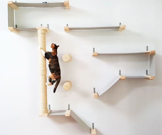 149 best images about cat wall shelves on pinterest cat shelves cats and cat houses - Wall mounted cat climber ...