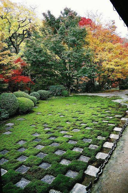 the northen garden of the hojo kyoto japan