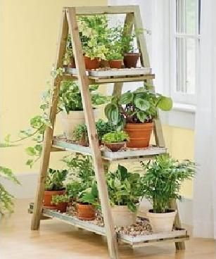 "An indoor herb garden - this looks great! (...and for me, this is yet another ladder style for ""treasure"" display & there's one waiting for me if I want it ... k)"