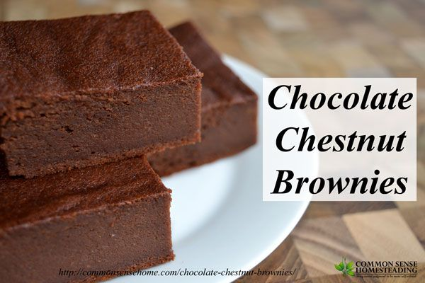 Chocolate Chestnut Brownies recipe - One bowl recipe for rich, cake like gluten free brownies made with chestnuts or chestnut flour.