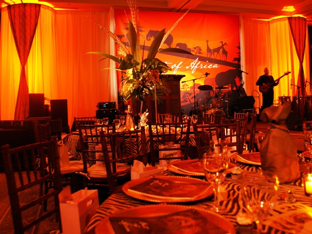 153 best safari afrika images on pinterest for African party decoration