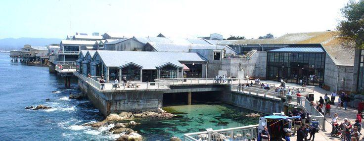 Best 25 Monterey Bay Ideas On Pinterest Monterey Usa