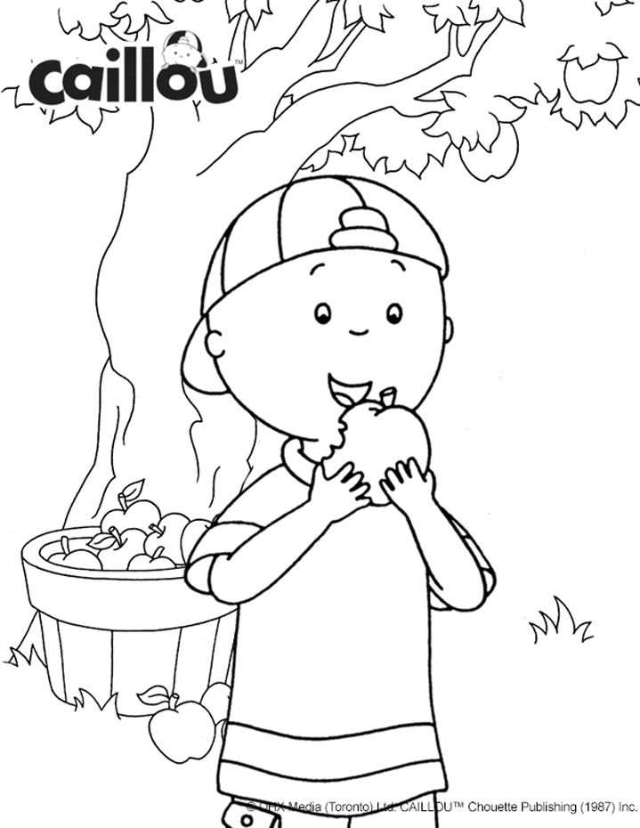 144 Best Caillou Activities Amp Printables Images On