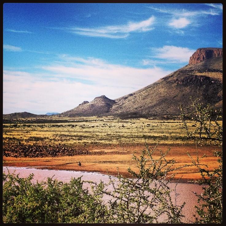 Karoo Landscape - South Africa
