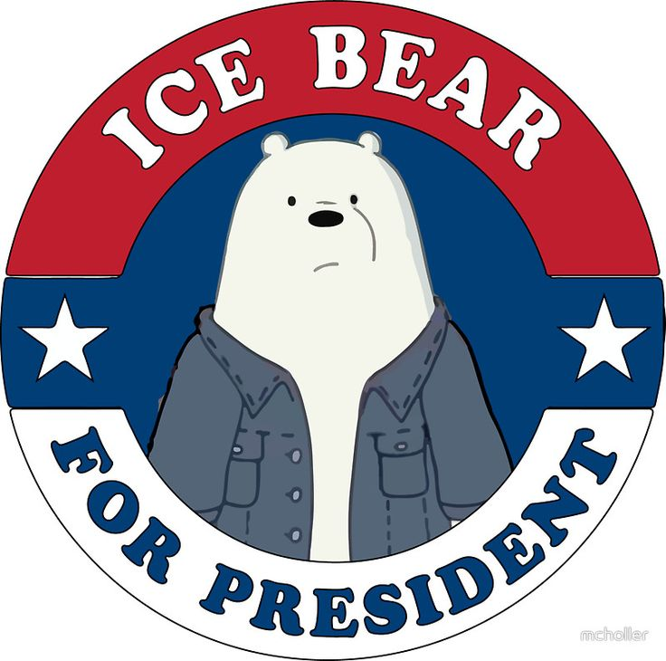 ICE BEAR FOR PRESIDENT. by mcholler