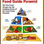 The Food Pyramid is making you fat