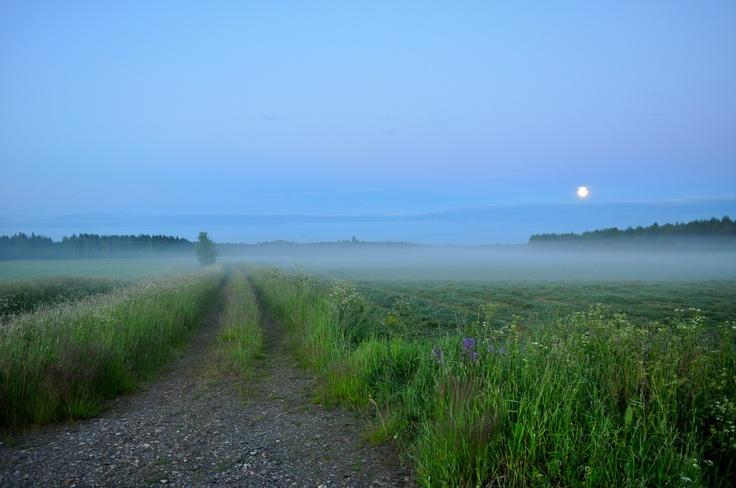 One night in July..  (Joensuu, Finland)