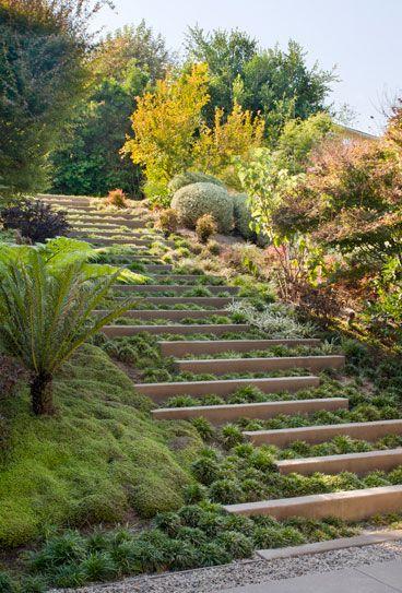 Slope landscaping design.