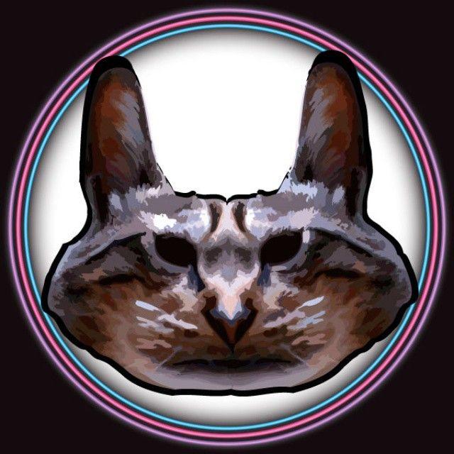 DIZZY CAT. #digitalart #artedigital #photoshop #illustrator #vectores  #gato #kat #cat #felino #Ilustración #dibujo #fotomontaje #fotomanipulación #instaart #artegram