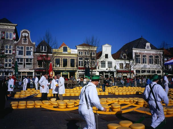 Cheese market,Alkmaar. The Netherlands - Lonely Planet