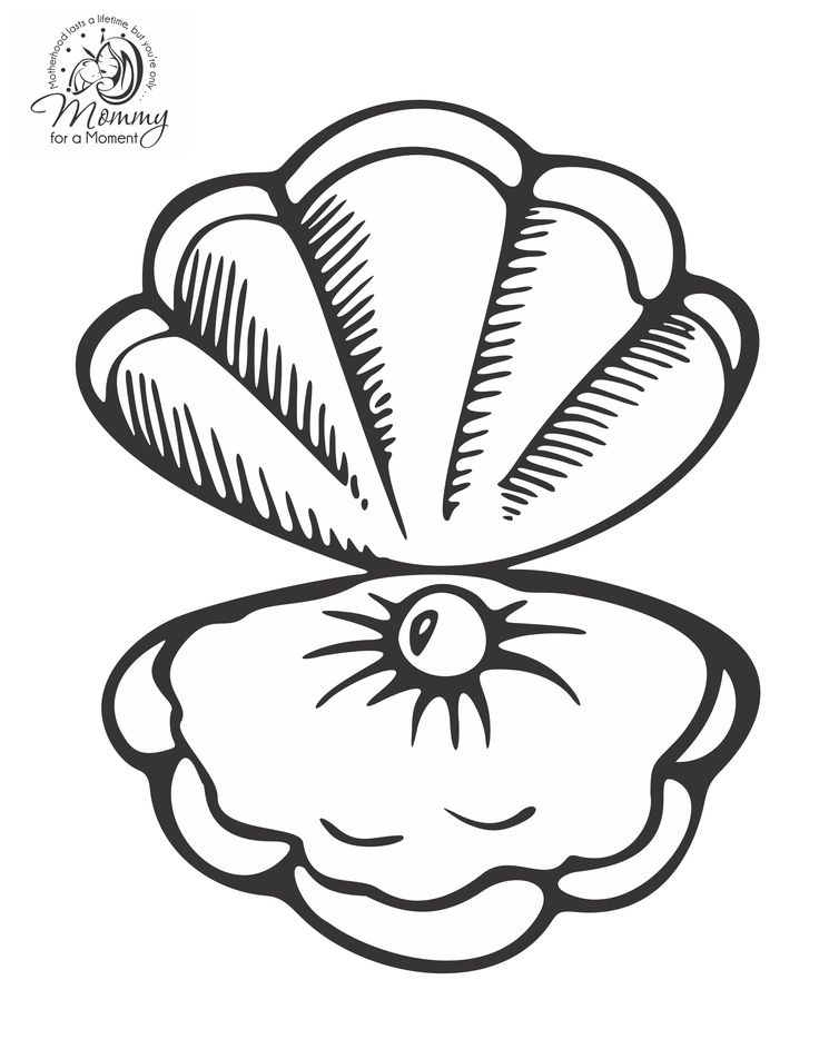 Ariel sitting pretty oyster shell coloring page pictures for Shells coloring page