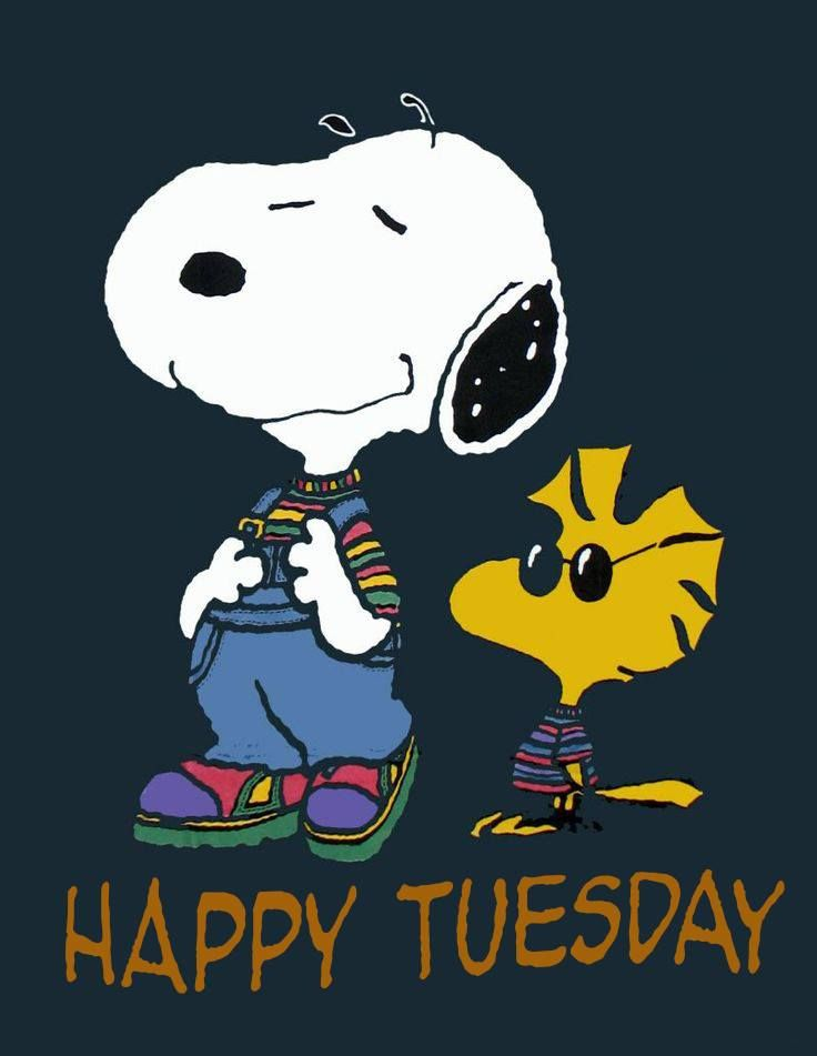 Tuesdays are nice: it's NCIS night.  Let's celebrate. <3