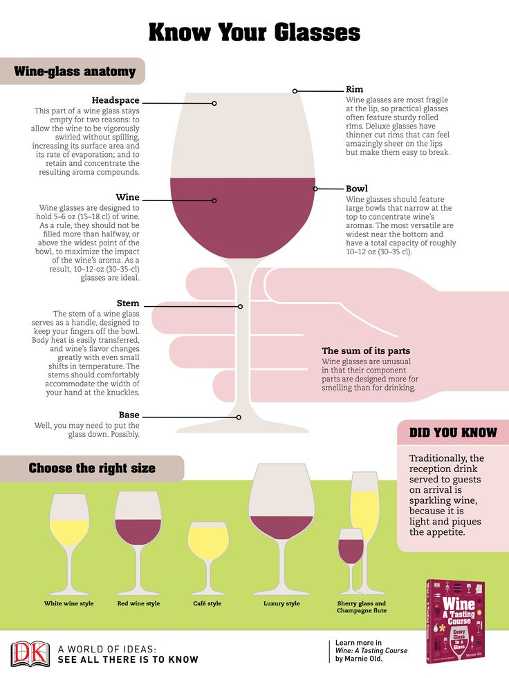 Anatomy of a wine glass, a handy infographic.