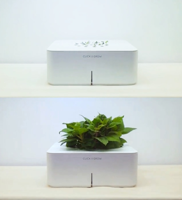 This smart garden will grow plants without any watering or fertilizing - Perfect for growing herbs and spices!
