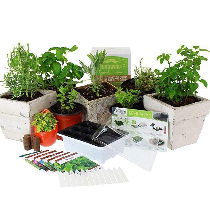 Amazon Com Culinary Indoor Herb Garden Starter Kit Basic Herb